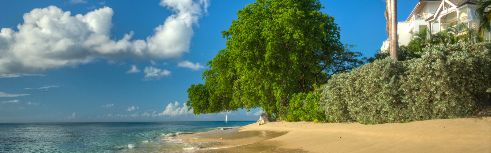 Last Minute Barbados